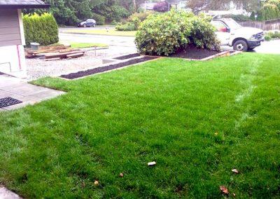 lawn-1-768x1024